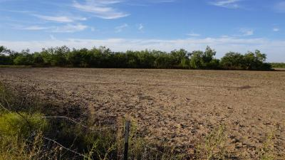 Residential Lots & Land For Sale: 2598 E 10th St