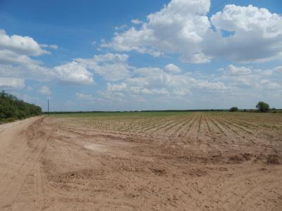 San Angelo Residential Lots & Land For Sale: 9605 Fm 2166
