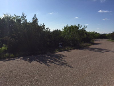 Christoval Residential Lots & Land For Sale: 17033 Amanda Dr