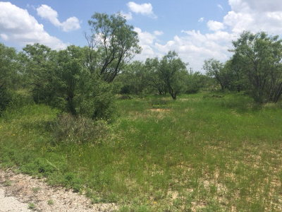 Ballinger Residential Lots & Land For Sale: Country Club Rd