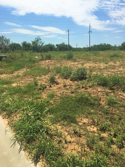 San Angelo Residential Lots & Land For Sale: 4129 Chisholm Tr