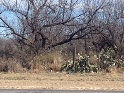 San Angelo Residential Lots & Land For Sale: 4704 S Chadbourne St
