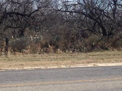 San Angelo Residential Lots & Land For Sale: 4774 S Chadbourne St