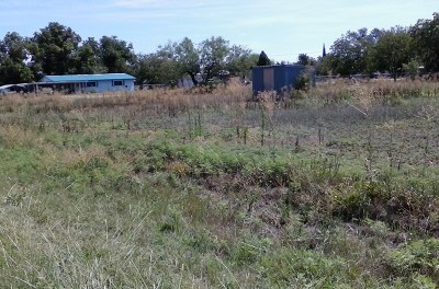 San Angelo Residential Lots & Land For Sale: Dahlia Ave