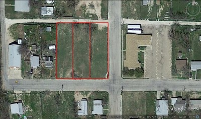 San Angelo Residential Lots & Land For Sale: 804 W 16th St