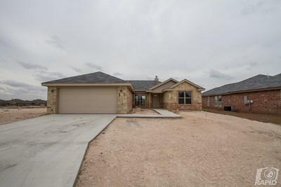Paulann, Paulann Park, Paulann West Single Family Home For Sale: 2873 Joshua St