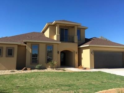 San Angelo Single Family Home For Sale: 6129 Lois Lane