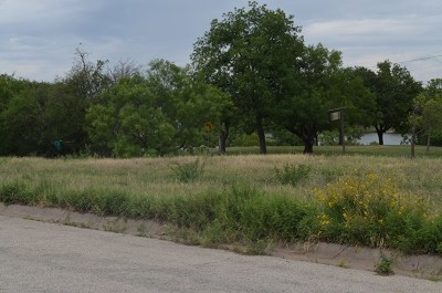 San Angelo Residential Lots & Land For Sale: Holiday Dr.