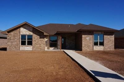 San Angelo Single Family Home For Sale: 4110 Huntleigh Dr