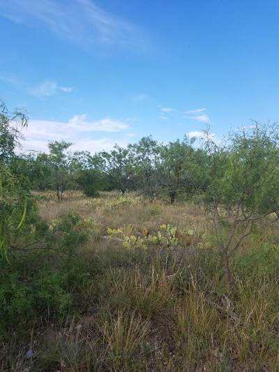 San Angelo Residential Lots & Land For Sale: 1330 E 26th St