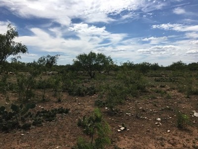 San Angelo Residential Lots & Land For Sale: Runion Rd