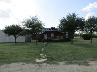 Carlsbad Single Family Home For Sale: 9773 Burma Rd