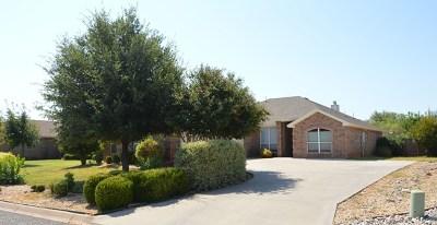 San Angelo TX Single Family Home For Sale: $229,900
