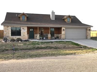 San Angelo TX Single Family Home For Sale: $209,900