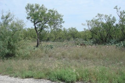San Angelo Residential Lots & Land For Sale: Bowie St