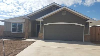 Paulann, Paulann Park, Paulann West Single Family Home For Sale: 1009 Hope Court