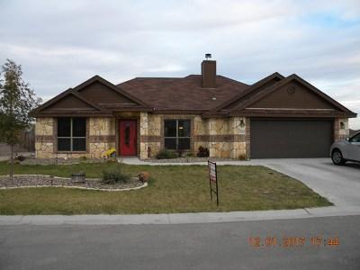Paulann, Paulann Park, Paulann West Single Family Home For Sale: 1206 Daniel St