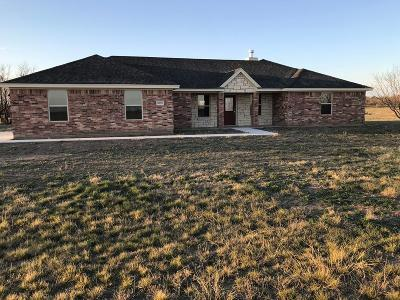 Single Family Home For Sale: 2095 Reece Rd