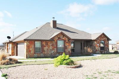 San Angelo Single Family Home For Sale: 8041 Bison