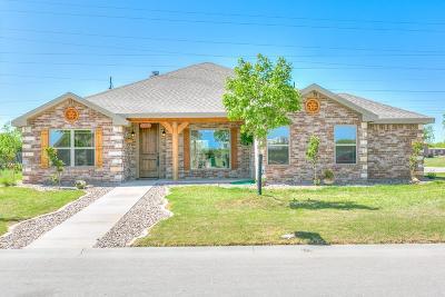 San Angelo Single Family Home For Sale: 2321 Cheyenne Trail