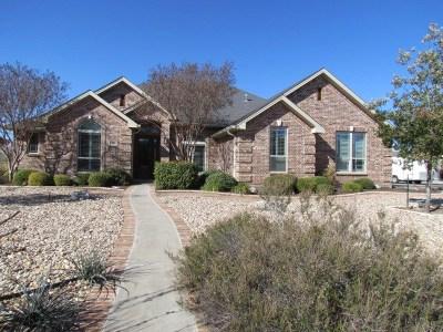 San Angelo Single Family Home For Sale: 4101 Brook Hollow Lane