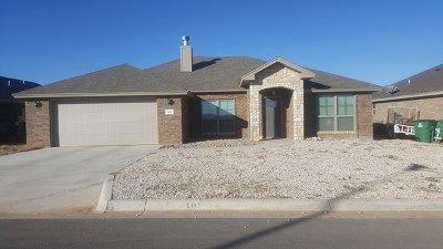 San Angelo Single Family Home For Sale: 5818 Willeke Drive