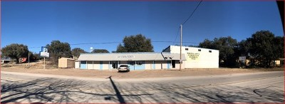 Commercial For Sale: 19734 Main St