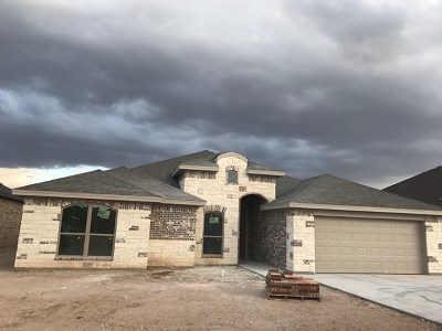 San Angelo Single Family Home For Sale: 5918 Tarin St