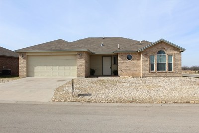 Single Family Home For Sale: 1229 George Lane
