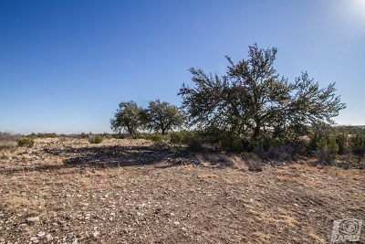 Christoval Residential Lots & Land For Sale: 16670 Vaquero Trail