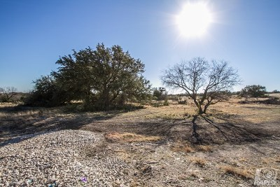Christoval Residential Lots & Land For Sale: 16790 Vaquero Trail