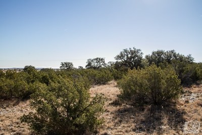 Christoval Residential Lots & Land For Sale: 17020 Vaquero Trail