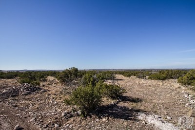 Christoval Residential Lots & Land For Sale: 17135 Vaquero Trail