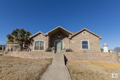 San Angelo Single Family Home For Sale: 1701 Weston Rd