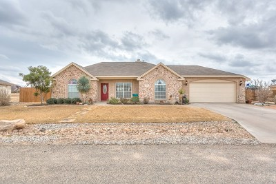 San Angelo TX Single Family Home For Sale: $198,500