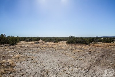 Christoval Residential Lots & Land For Sale: 16950 Caballo Blanco Lane