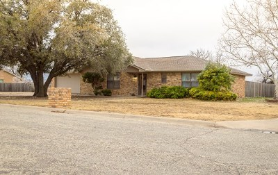 San Angelo Single Family Home For Sale: 5701 Oriole Dr