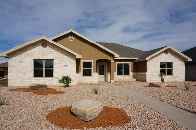 San Angelo TX Rental For Rent: $2,200