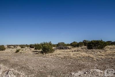Christoval Residential Lots & Land For Sale: 17110 Caballo Blanco Lane