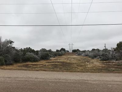Christoval Residential Lots & Land For Sale: 3303 Venado Dr