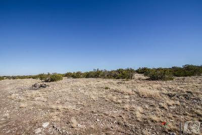 Christoval Residential Lots & Land For Sale: 17250 Caballo Blanco Lane