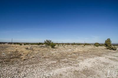 Christoval Residential Lots & Land For Sale: 16775 Caballo Blanco Lane
