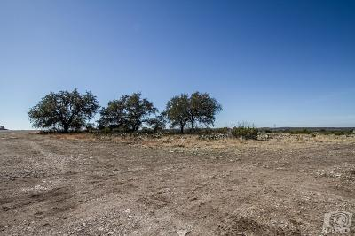 Christoval Residential Lots & Land For Sale: 16865 Caballo Blanco Lane