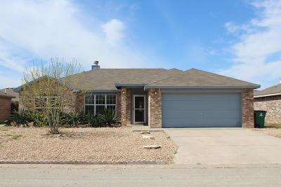 San Angelo Single Family Home For Sale: 1223 George Lane