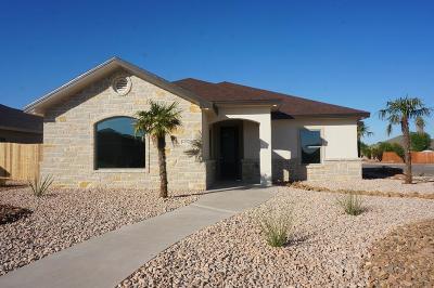 San Angelo Single Family Home For Sale: 4170 Kensington Creek