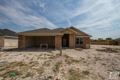 San Angelo Single Family Home For Sale: 2838 Joshua St