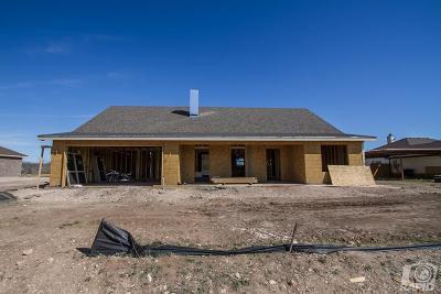 San Angelo Single Family Home For Sale: 8338 Puma Court