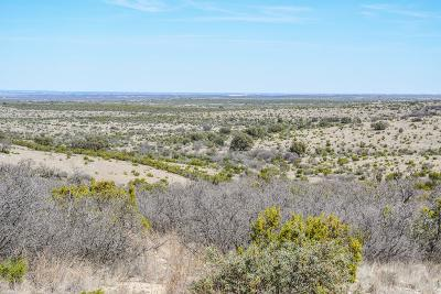 Christoval Residential Lots & Land For Sale: Hwy 277