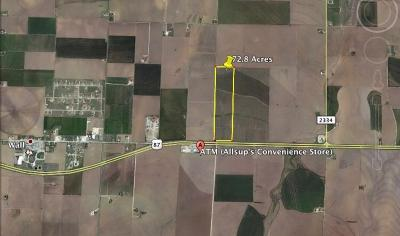 Residential Lots & Land For Sale: Hwy 87