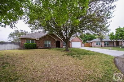 San Angelo Single Family Home For Sale: 6504 Firestone Place